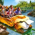 Busch Gardens Tampa Bay 120x120 Video 2