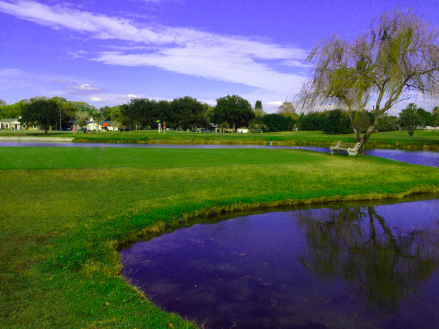 clearwater golfclub Tampa Championship Golf Value