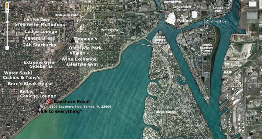 1. Best Location on Bayshore Blvd in Tampa Tampa Bay